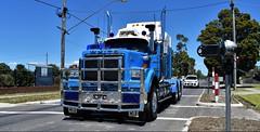 photo by secret squirrel (secret squirrel6) Tags: secretsquirrel6truckphotos craigjohnsontruckphoto australiantrucks bigrigs worldtrucks truckphotos white whiteroadboss 2018