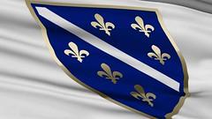 Zastava RBH (AntiDayton) Tags: rbihrepublikabih bih bosna hercegovina antidayton