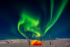 Winter camping and northern lights (nordanheidar) Tags: iceland winter wintercamping camping tent northerlights auroraborealis aurora sky nightphotography adventure adventurephotography crosscountryskiing snow cold