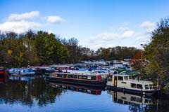 River Lea by Springfield Park (London Less Travelled) Tags: uk unitedkingdom britain england london eastlondon clapton river lea lee riverlea water boat barge reflection
