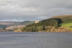 IMG_4263 (del.hickey) Tags: ponstsicill reservoir wales
