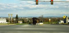 red light (bluebird87) Tags: road amish horse buggy dx0 c41 epson v800 kodak ektar film nikon f5 lightroom