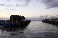 Light, Whitstable (NovemberAlex) Tags: whitstable kent boats water seaside light