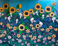 American Graffiti @ Ashby Flowers (alessio.vallero) Tags: flowers streetpainting draw sunflowers california berkeley