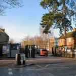 Sunny Fortismere thumbnail
