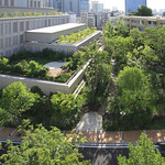 都市再開発におけるランドスケープデザインの写真