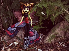 (Linayum2.0) Tags: lunamothews mh monster monsterhigh mattel doll dolls muñecas muñeca toys toy juguetes juguete linayum