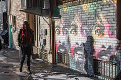 trumbell-6981 (FarFlungTravels) Tags: county northeast alley alleyway davegrohl ohio travel trumbell warren