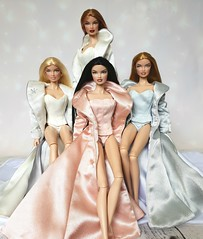 The Original Fashion Royalty (Lyanne NZ) Tags: fashion royalty close up morning frost evening chill raven integrity toys