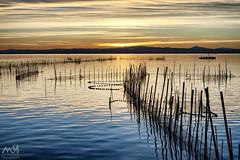 Albufera de Valencia. Sony A7M3. Nov2018_3 (MSB.Photography) Tags: sony a7iii a7m3 ilce7m3 atardecer sunset nubes clouds paisaje landscape seascape agua water lake lago lagoon reflections reflejos sol sun cielo sky albufera valencia calm calma pesca fishing sonya7iii sonya7m3 puestadesol serenidad sonyfe50mmf18 50mm sonyfe50mm boat barco montañas mountain