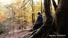 barely function (Mattijn) Tags: autumn stroll contemplate melancholy forest videomontage mattepainting acousticguitar song musicvideo tree tower wolfsdreuvik