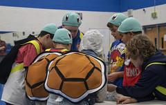 Lego Squirtles (noname_clark) Tags: fll first lego firstlegoleague costume