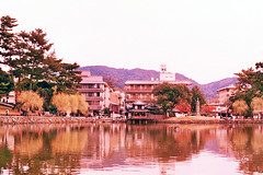 (Kkeina) Tags: film analog manual 35mm 50mm olympus om1 expired colour grain nara aytumn leaves japan