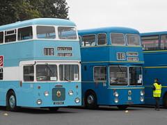 Walsall Daimler Fleetlines @ Showbus 2018 (4) (Andy Reeve-Smith) Tags: daimler daimlerfleetline 56 116 xdh56g xdh516g 6lx crg6lx crc636 cummins walsall walsallcorporation wmpte westmidlandspte showbus 2018 showbus2018 doningtonpark donington castledonington derbyshire derbys leicestershire leics neleics