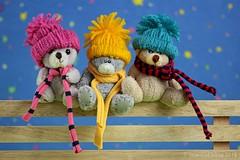 DRIE KLEINE KLEUTERTJES || THREE LITTLE TODDLERS (Anne-Miek Bibbe) Tags: kinderliedje nurseryrhyme childrenssong driekleinekleutertjes threelittletoddlers happyteddybeartuesday speelgoed toy spielzeug giocattoli juguetes bringuedos jouets bear teddybear beertje teddybeer beer speelgoedbeer nounours minibeer minibear canoneos700d canoneosrebelt5idslr annemiekbibbe bibbe nederland 2018 hek hekje fence fancy fancyfence hff happyfencefriday recinto cerca cloture zaun smileonsaturday happpysmileonsaturday