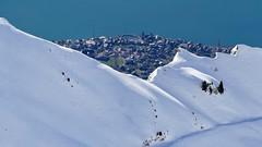 Brienz Switzerland (roli_b) Tags: brienz brienzersee brienzer see lake lago village dorf city snow view from rothorn schnee hügel berg tanne switzerland schweiz suisse suiza svizzera berner oberland bernese winter 2018