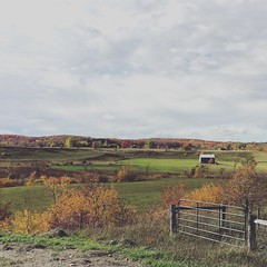 Valley views (jessalynn_sammons) Tags: squareformat instagram countryview iphone gate fence fallcolours green autumncolours fall autumn barn valley