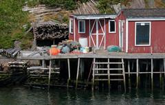 A Fisherman's Wharf (peterkelly) Tags: digital canon 6d northamerica canada newfoundlandlabrador stjohns harbor harbour red encarnado dock wooden wood quidividi water float nets