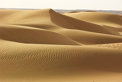 Mar de Dunes. (josepponsibusquet.) Tags: desert desierto arena sorra duna dunes campaments campamentos refugiats refugiados sahrauís saharauís sàhara tindouf tinduf algeria argelia dunesdedajkla dajla mardedunes formes meravelles maravilla