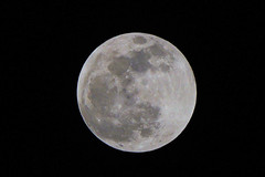 Lunar Eclipse (Roger Inman) Tags: moon linear total eclipse wolfmoon