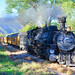 The Durango and Silverton Narrow Gauge Railway