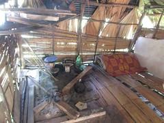 Orang Asli tribe, hut (sebd_ch) Tags: cameron highlands orang asli