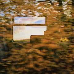 Fenster #autumn #Herbst #commute #pendeln #reflektion #reflection #train #zug #fall #laub #vsco #vscocam #cologne #köln