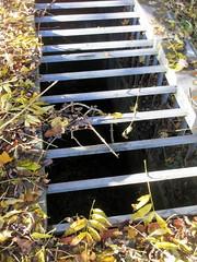 Prtotected Streeam (paidetres) Tags: heaverham kent walk stream grid