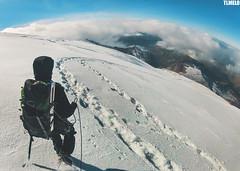 Volcano Cayambe - Ecuador (TLMELO) Tags: cayambe cotopaxi antisana corazon ecuador volcano vulcan vulcão equador summit cumbre keepwalking justdoit impossibleisnothing man home kneel ajoelhado crater cratera andes pequeñoalpamayo southamerica américadosul altiplano climb climber mount trekking sky céu clouds caminhada heavy hiking climbing hike backpack backpacking walking walk ice glacier glaciar gelo snow neve cume landscape nature natureza paisagem trilha mountain montanha mountaineer panorama illinizas