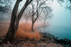 Mystic Lake (Jon Dickson Photography) Tags: infrared illinois trees winter lake waterscape horseshoe ngc greatphotographers