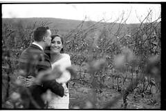 NideenRyanWedding_241 (Johnny Martyr) Tags: wedding smile vineyard vines wine kiss embrace composition out focus area bokeh depth field portrait bride groom husband wife film bw black white 35mm frederick maryland
