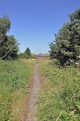 33739 (benbobjr) Tags: lincoln lincolnshire midlands eastmidlands england english uk unitedkingdom gb greatbritain britain british torksey train railway bridge manchestersheffieldandlincolnshirerailway retfordsaxilbylincoln greatcentralrailway torkseyrailwaystation torkseystation ruin ruins rust abandoned thefairways
