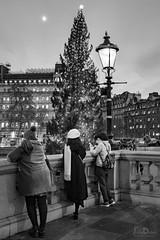 trafalgar square | london (John FotoHouse) Tags: bw blackandwhite 2018 december leedsflickrgroup london dolan flickr fujifilmx100s fuji johnfotohouse johndolan copyrightjdolan people