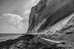 Møns Klint (Denmark) (Ondablv) Tags: møns klint denmark chalk cliffs scogliere promontorio danese møn mar baltico liselund parco naturale danimarca sea mare ondablv danish black white bianco nero bn