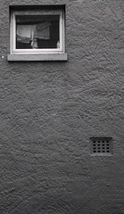 Tiny Window (Haruhara_Izzy) Tags: leica standard 35mm ilford hp5 id11 canoscan 9000f waiuku