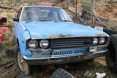 Datsun 810 200B SX (jeremyg3030) Tags: datsun 810 200b sx cars japanese abandoned wreck