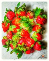 Fruit 🍊🍎🍑 is nature's candy 🍭 And Strawberries 🍓🍓🍓 are the sweetest ones. . . . #tamjiid17 #snapsbytamjid #strawberry #strawberries #pietime #raspberry #smoothietime #farm #springday #farmtob (snaps.by.tamjid) Tags: berry vitaminc berries summer tamjiid17 strawberries farm snapsbytamjid springday organic smoothie raspberry berrycake smoothietime strawberry berrypicking picking vitamin farmtobar vitamins pietime sweets garden tasty eatinghealthy