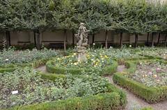 Rose Garden at Neue Residenz (rschnaible) Tags: bamberg germany europe outdoor sightseeing garden botanical rose neue statue residence