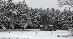 Grimes Hill Abandoned Old Schoolhouse-Sabinsville (dfbphotos) Tags: 2018 november fall tioga sabinsville tiogacounty places grimeshill nature fog snow buildingsarchitecture school landscapes mountains collections schoolhouse pa usa