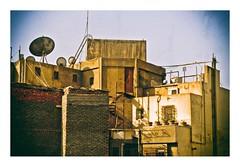 vue sur les toits, Le Caire (Marie Hacene) Tags: toits lecaire egypte parabole fenêtre pots plantes ville murs