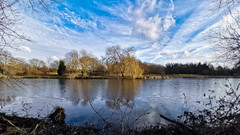 Icy (Mellisapix) Tags: blue lakes southeast england willowtree frozenlake coldwater cold icy evergreen bare trees willow water environment habitat nature landscape british uk february winter freeze lake ice frozen
