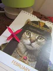IMG_3782 he he (belight7) Tags: funny cat calender cleopatra egyptian puss puddy