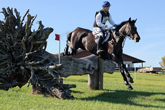 Jonathan Holling and Dalanteretto (Tackshots) Tags: eventing horsetrials crosscountry ocalajockeyclub reddick florida horse rider riding equestrian