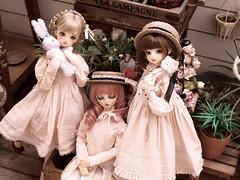 With friend (lucynaturu2) Tags: volks bjd sd standard nico mai fcsno03