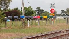 Letter boxes, Opaki (AA654) Tags: opaki wairarapa letter boxes box rural
