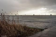 Hochwasser in Wilhelmshaven - Land unter (berndwhv) Tags: deutschland norddeutschland niedersachsen sturmflutgefahr wasser water hochwasser deich deichgebiet nordsee nordseeküste küste wilhelmshaven überschwemmung hafengebiet unwetter sturmflut sturmtiefbenjamin