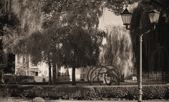 Street lamp with a little park (Violet aka vbd) Tags: pentax k1ii k1markii hdpentaxda55300mmf4563edplmwrre germany vbd park badhomburgvorderhöhe sepia handheld fall2018 2018 manualexposure