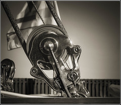 Running Back Detail (Steven Norris Photography) Tags: sailing newport