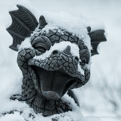Snow!  :-) (kimbenson45) Tags: animal closeup differentialfocus dragon garden gray grey laughing ornament outdoors sculpture shallowdepthoffield snow white winter