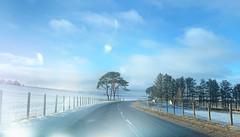 Sunshine and snow (Elisafox22) Tags: elisafox22 apple iphone iphonexsmax camera hff happyfencefriday grass snow road fencedfriday fence fences sunshine sky bluesky fenceposts fields tree scotspine pine caledonianpine trees pinetrees outdoors blue roadside clouds aberdeenshire scotland elisaliddell©2019 tistheseason